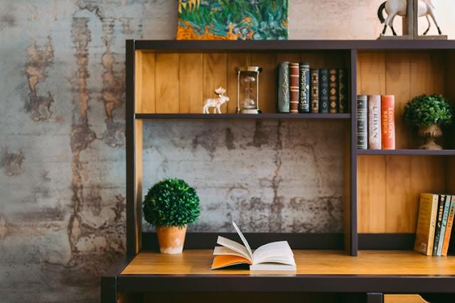 biblioteca con libros y un arbol en dia luminoso