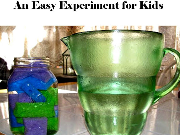 What Fills Your Day? An Easy Experiment for Kids