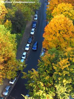 Herbstbalkon