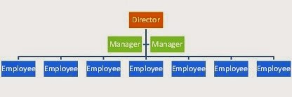There are fewer levels with each level controlling  broad area or group in the flat structure organisation this example is one person also project management organizational culture and strategy rh projectmanagement spot