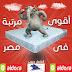 اقوي مرتبة في مصر في الخاطر جروب