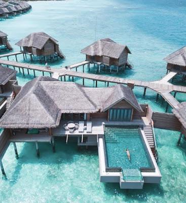 Cercasi libraio per resort di lusso alle Maldive