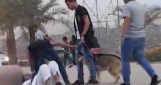 بنزرت: القبض على مجرم خطير يستعمل سيفا وكلابا شرسة:مروع متساكني حي