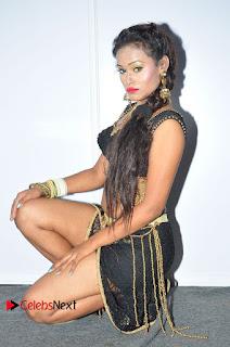 Actress Dancer Nisha Pictures at Janatha Garge Sucess Meet  0073.JPG