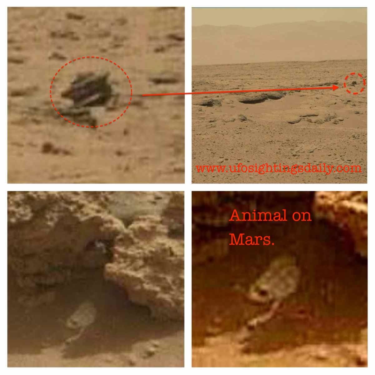aliens from mars - photo #41