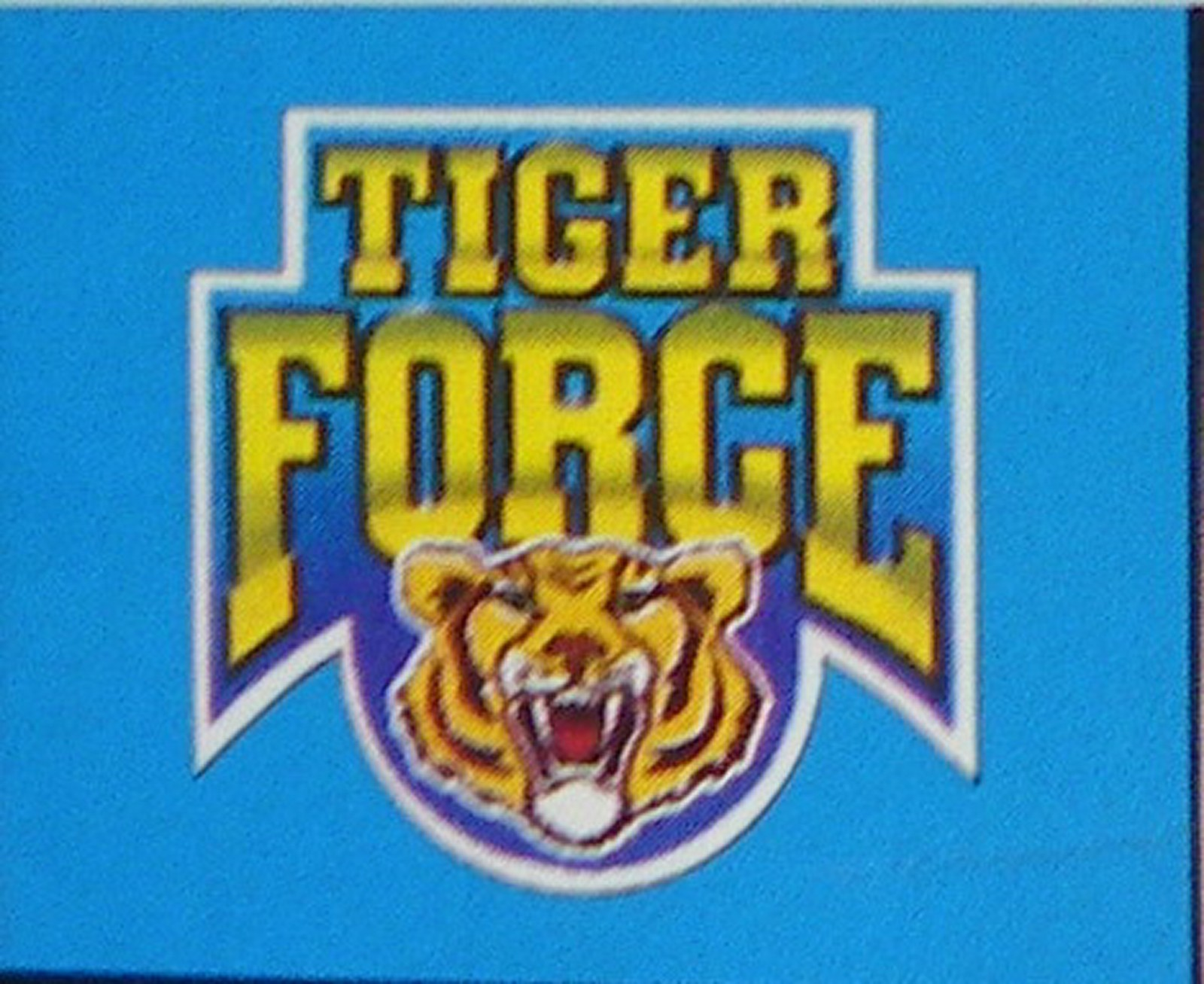 Toys From The Past 251 G I Joe Tiger Force European