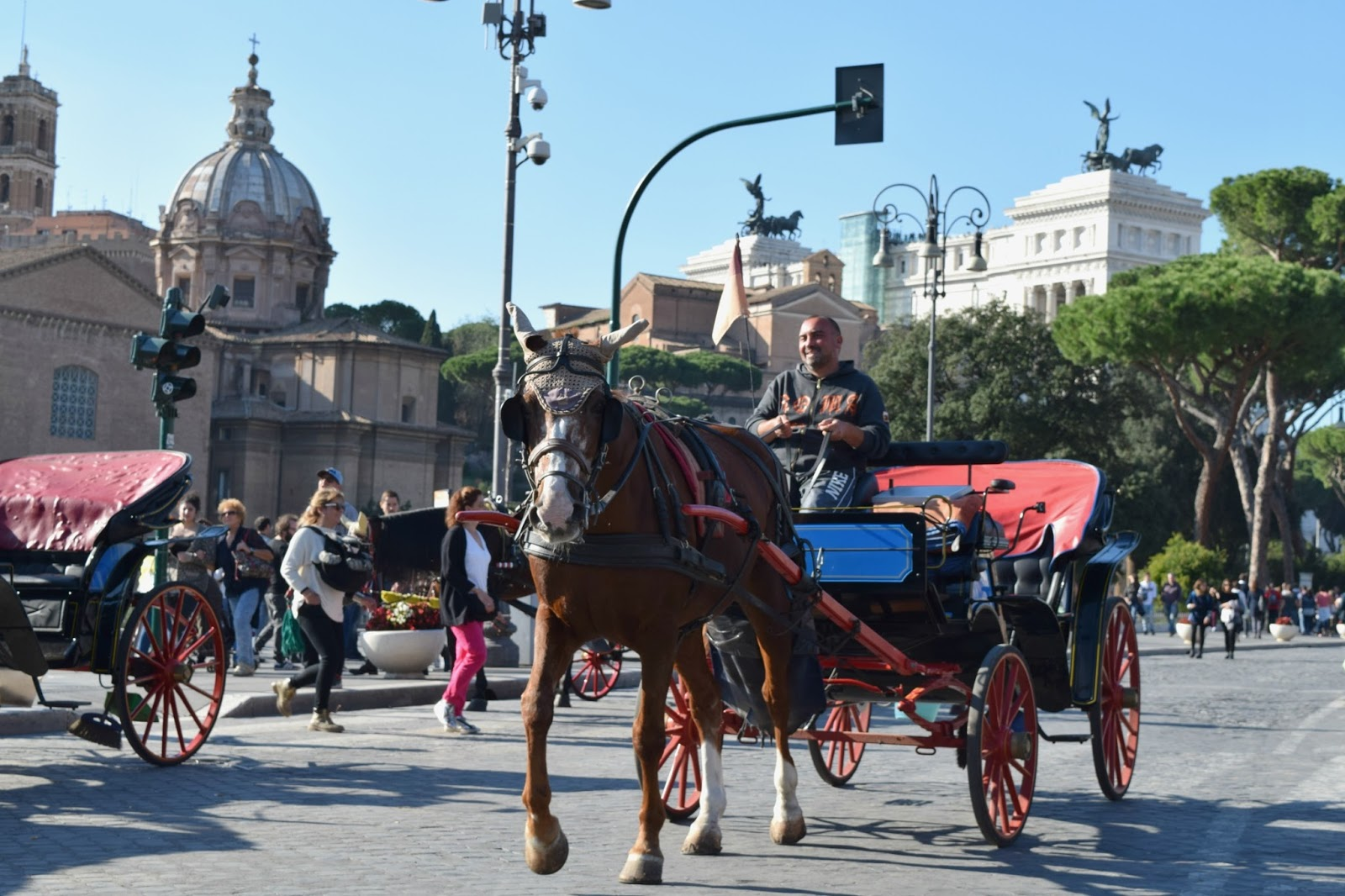 horse carriage tourism in rome