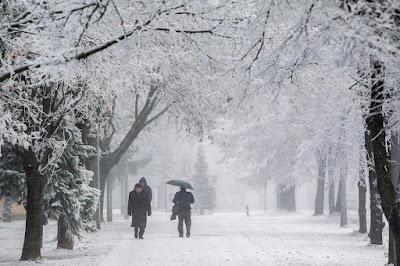 időjárás, hófúvás, havazás, fagy, szélvihar, Románia