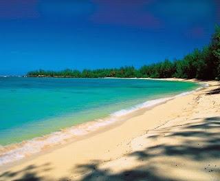 Big Island Real Estate, Hawaii Condos For Sale