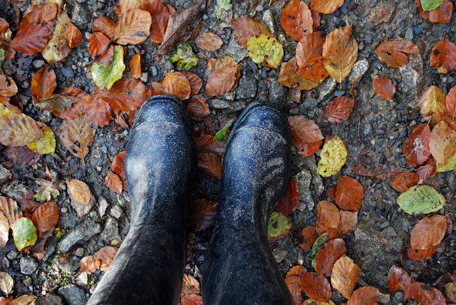 Autumn leaves and wellies