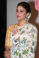 Lavanya Tripati in beautiful Printed Saree At Mayavan Audio Launch 17 4 2017 001.jpg