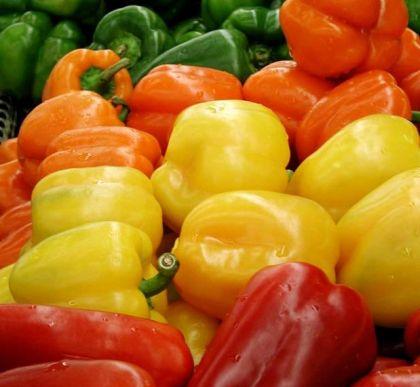 Memilih Makanan Yang Relatif Mudah Dicerna Oleh Lambung Atau Usus