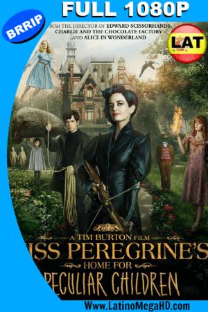 Miss Peregrine y Los Niños Peculiares (2016) Latino Full HD 1080P (2016)
