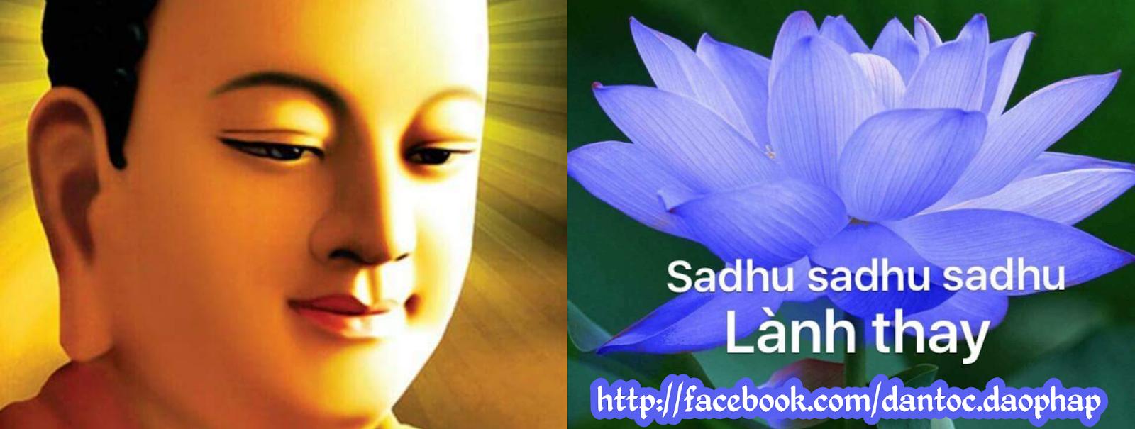 Những lời chia sẻ quý báu giúp bạn sống hạnh & giác ngộ... - Thiền sư Viên Minh