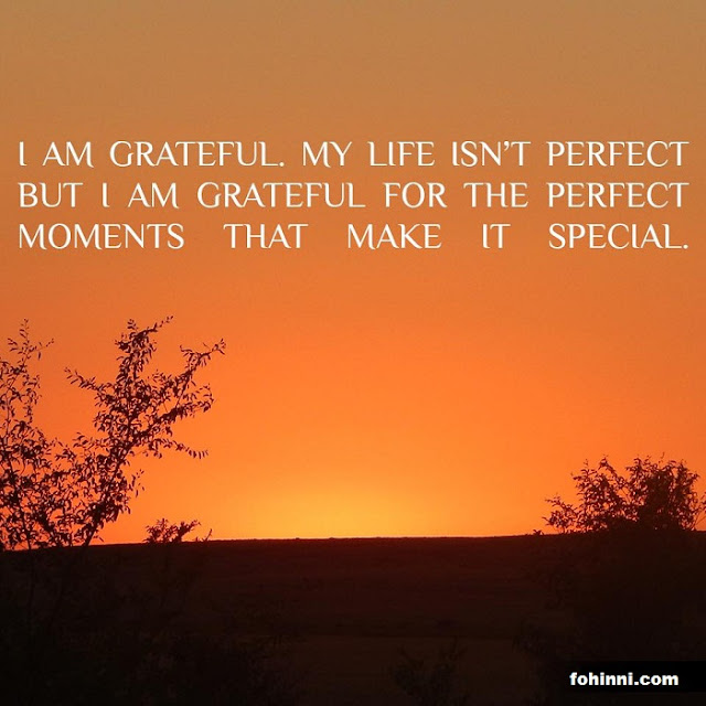 I AM GRATEFUL. MY LIFE IS NOT PERFECT BUT I AM GRATEFUL FOR THE PERFECT MOMENTS THAT MAKE ME SPECIAL.
