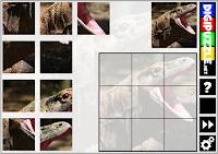 https://www.digipuzzle.net/digipuzzle/animals/puzzles/blockpuzzle_3x3.htm?language=portuguese&linkback=../../../pt/jogoseducativos/infantil/index.htm