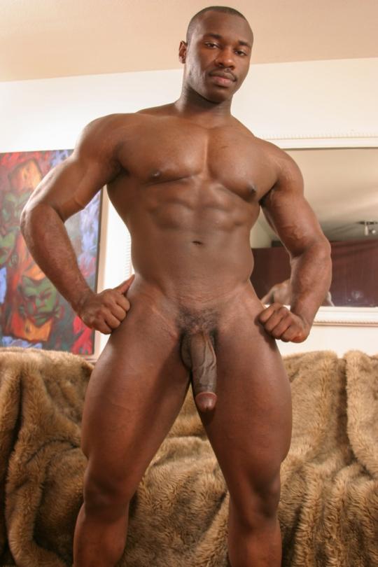 Big dick niggas galleries nude flashing
