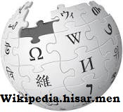 Wikipedia Hisar