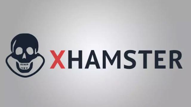 Unos 'hackers' publican los datos de 380.000 usuarios del sitio web para adultos xHamster