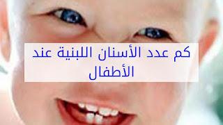 كم عدد الاسنان اللبنية عند الاطفال