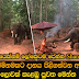 Monk forest dwelling elephant herd presented alms