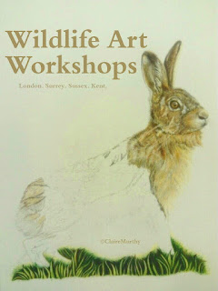 Drawing a detailed hare. Art Workshops Kent Surrey Sussex London.