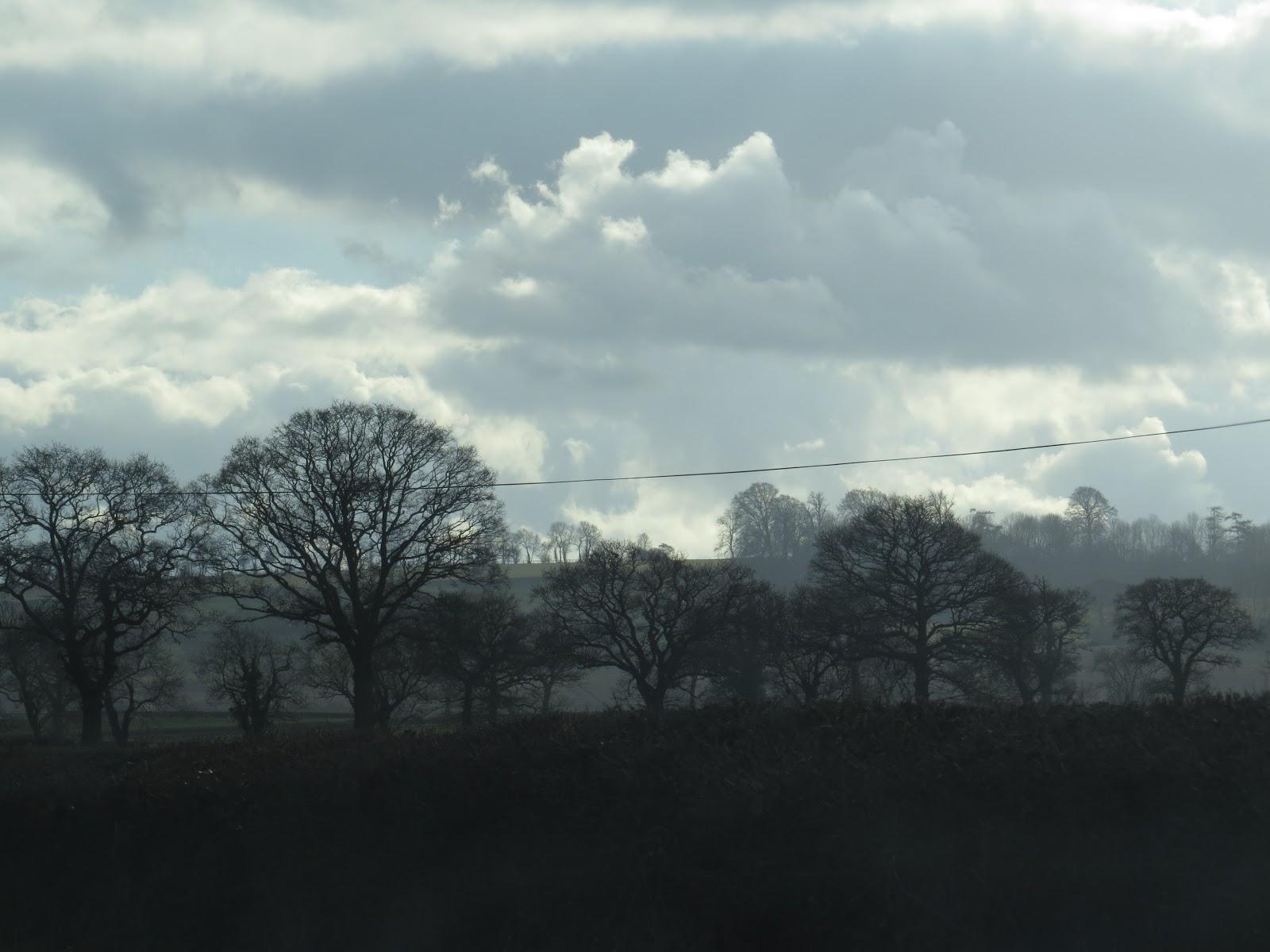 Nature S Way Worcester