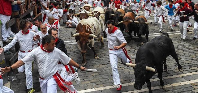 Cinco pessoas ficam feridas em corrida de touros na Espanha