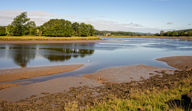Photo of the River Dee at low tide