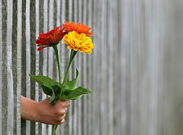 Expresar con flores lo que realmente sientes
