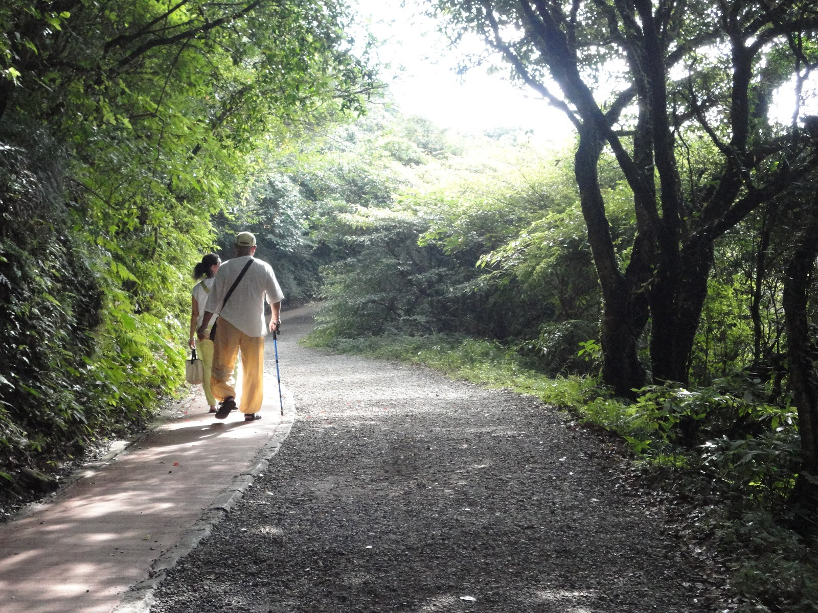 photo essay yangmingshan my favorite escape from the city the the trail to erzihping in yangmingshan national park taiwan
