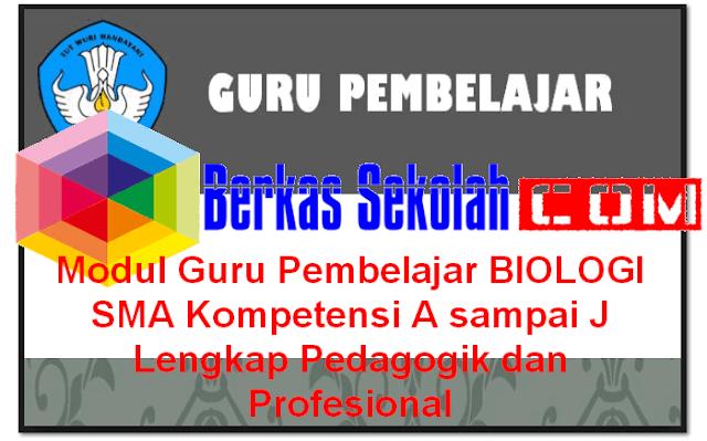 Download Modul Guru Pembelajar BIOLOGI SMA Kompetensi A sampai J Lengkap Pedagogik dan Profesional