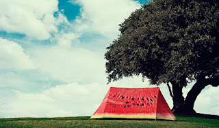 Watermelon 2-Person Camping Tent alooflook.com