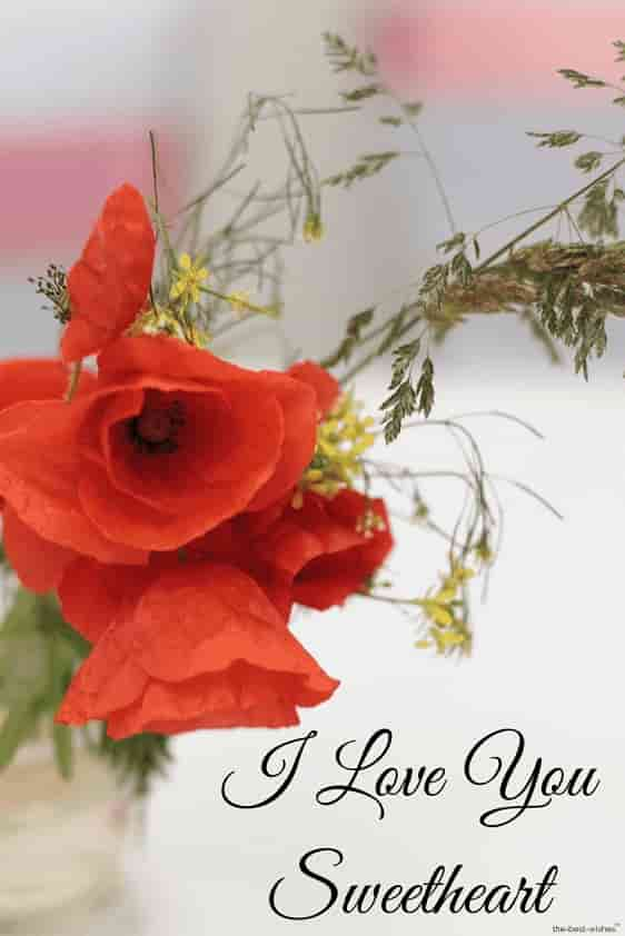 i love you sweetheart hd pic with red flowers