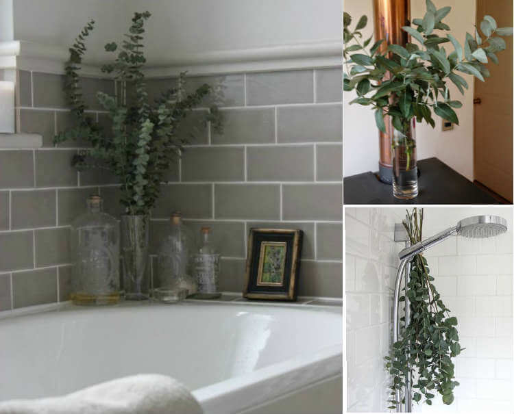 decorar con ramas de eucalipto