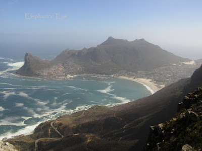 Hout Bay (houses everywhere)