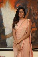 Eesha Rebba in beautiful peach saree at Darshakudu pre release ~  Exclusive Celebrities Galleries 061.JPG