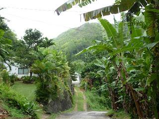 Chemin Val d'Endor - Mahé - Seychelles