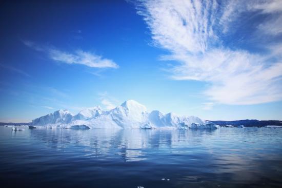 Langka! Serangga Ini Dikenal Binatang yang Tak Bisa Mati Membeku di Kutub