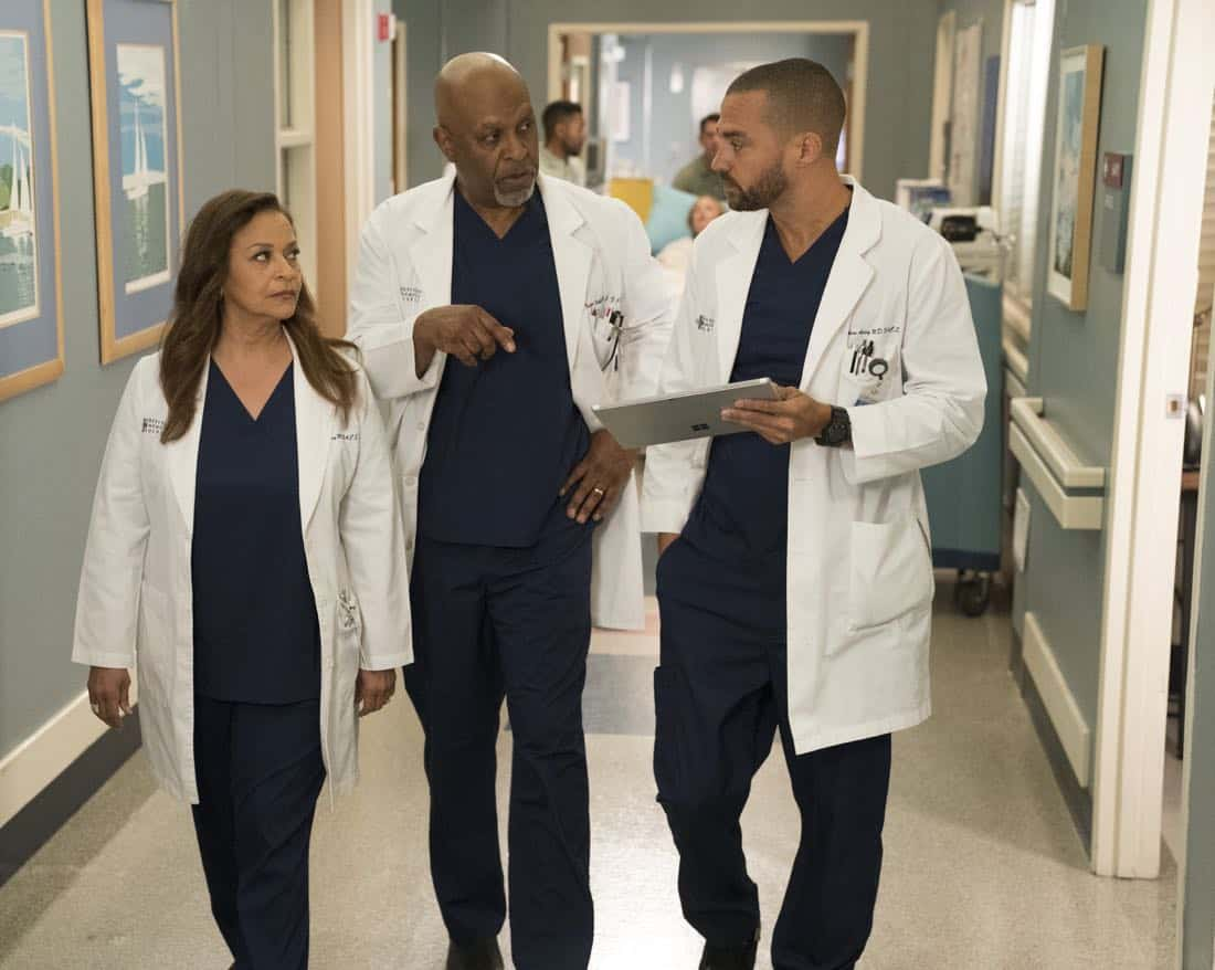 "Grey\'s Anatomy 14x16 Recap: ""Caught Somewhere in Time"" (Fixing the ..."