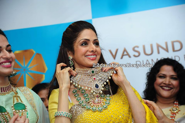 Celebrities and Actresses in Vasundhara Diamond Roof
