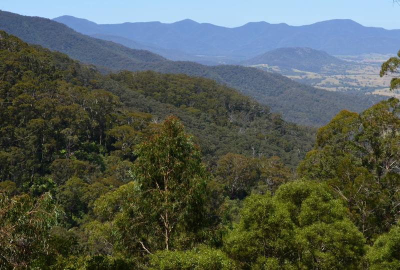 Julita i Wojtek w Krainie Kangurów - blog z Australii: Alpy ...
