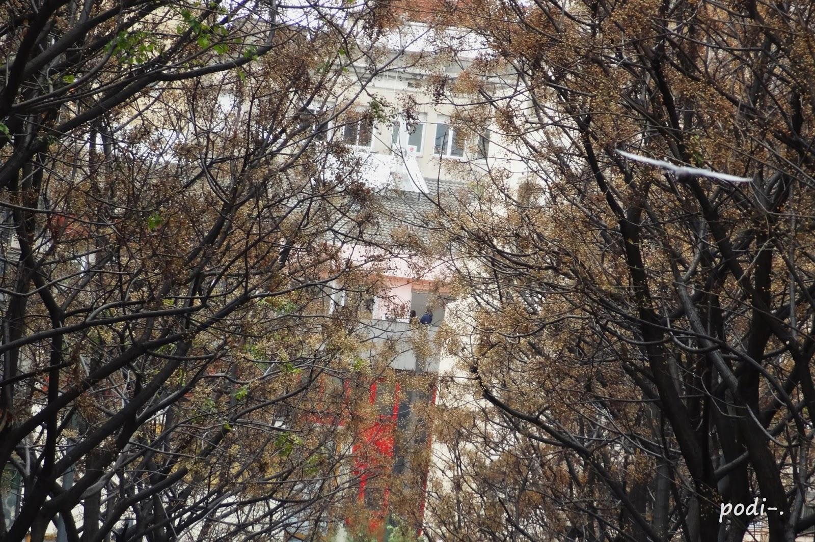 Rambla de Prat, Gran de Gràcia