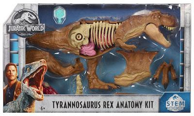 JURASSIC WORLD : Sterm Kit de anatomía de Tyrannosaurus Rex  Producto Oficial de la Película 2018 | Mattel FTF13 | A partir de 6 años  COMPRAR JUGUETE EN ESPAÑA
