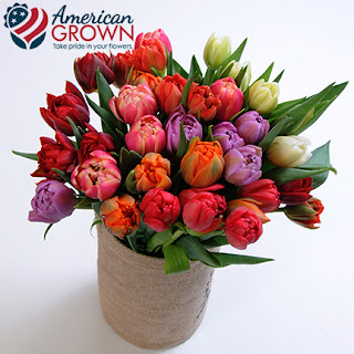 american grown flowers from Sun Valley
