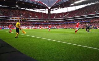 Benfica Futebol Adeptos