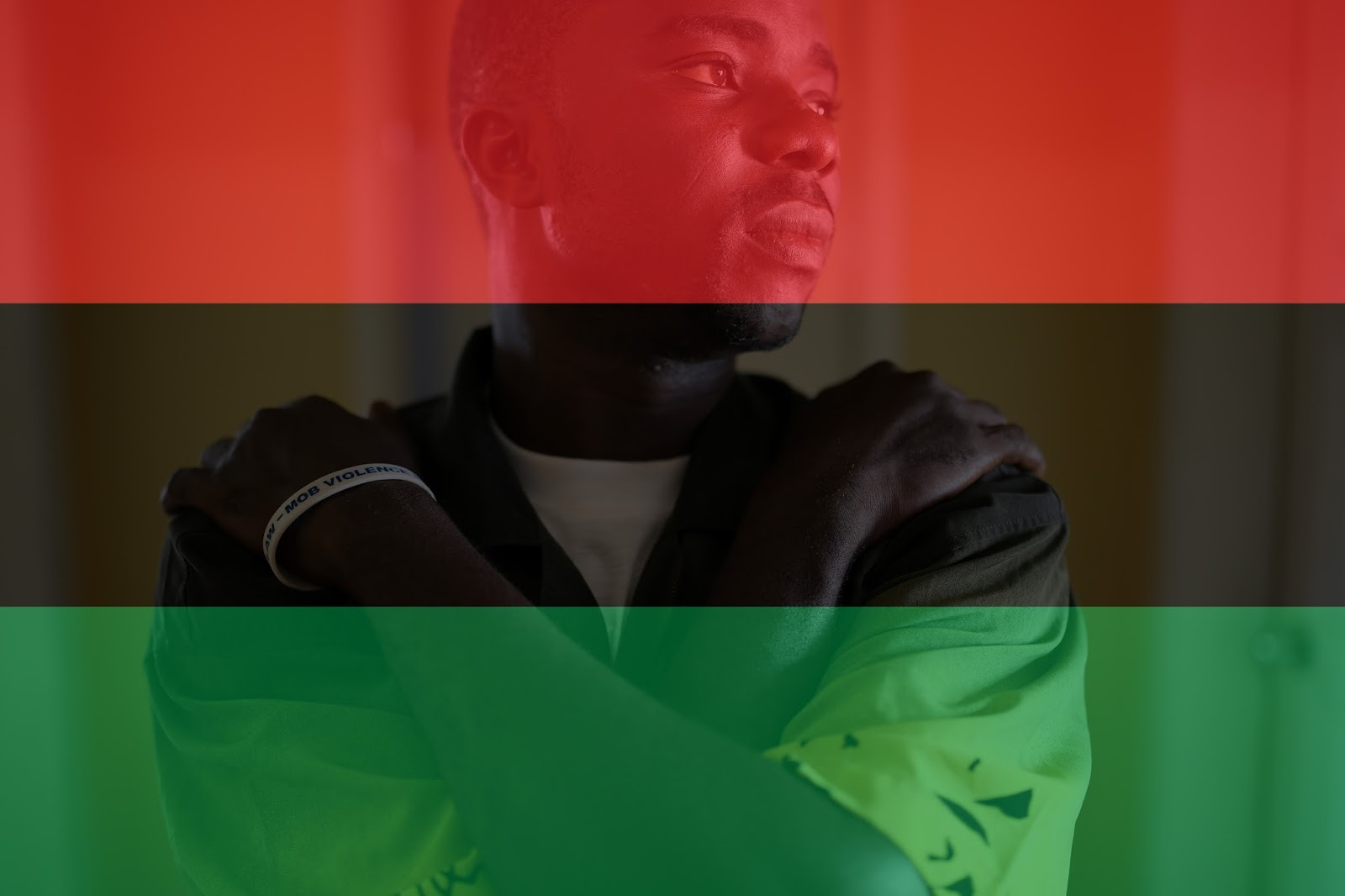 Red Black Green Flag of Black Liberation History and Meaning | Chic ...