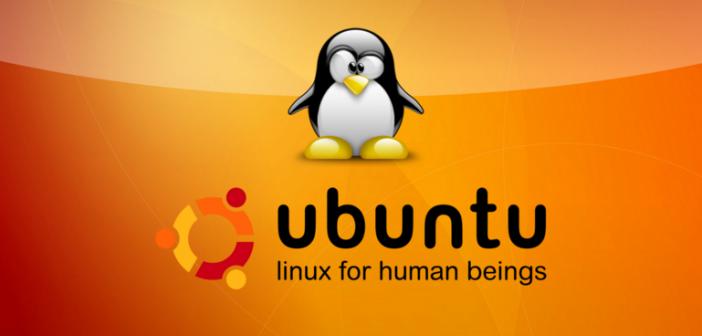 http://hotanmy.blogspot.com/2017/05/nhung-viec-can-lam-sau-khi-cai-dat-ubuntu.html