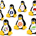 The Best Linux Distros for 2017
