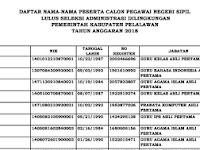 Hasil Seleksi Administrasi CPNS 2018 Kabupaten Pelalawan